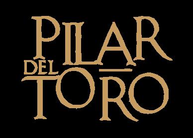 Hotel Casa del Pilar Granada